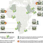 Défense : la carte des pays africains qui...