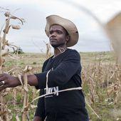 A la COP22, les négociateurs échouent à sauver l'agriculture africaine | Afrique: développement durable et environnement