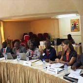 Projet Paludisme et maladies tropicales négligées au Sahel : le comité de pilotage évalue le niveau d'exécution | Afrique: Santé et Bien-être