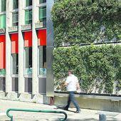 Des jardins verticaux dans les villes   pressagrun
