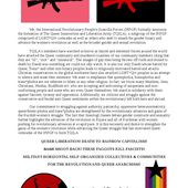 Rojava: The Formation of the Queer Liberation and Insurrection Army (TQILA) - IRPGF