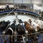 Ah, la vache ! * Jean-Marc Jancovici