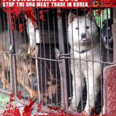 Petitions - Stop the Dog and Cat Consumption in S. Korea!