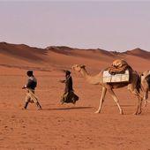 Échos du Mali par Pierre Bertet