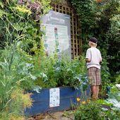 Lancer les Incroyables Comestibles dans sa ville ou son village : la méthode en 5 étapes