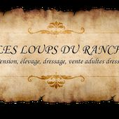 Elevage Malinois et Westies- Dressage - Pension , Les loups du Ranch, St-Sylvain-d'Anjou, Angers, #LesLoupsDuRanch.com