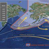 La vague de radiations issues de la centrale de Fukushima sera 10 fois plus grande que la totalité du rayonnement des essais nucléaires combinées | Les moutons enragés