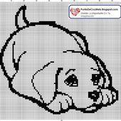 Un petit chien tout triste