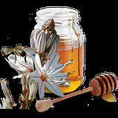 La maison du miel de Corse - Casa di u mele