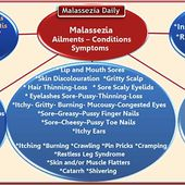 Malassezia and Morgellons Circles of Misfortune