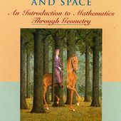 Wiley: Symmetry, Shape, and Space: An Introduction to Mathematics Through Geometry - L. Christine Kinsey, Teresa E. Moore