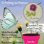 accueil EXPOSITION 2017