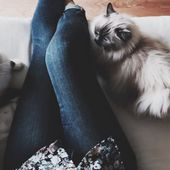 """Refuser le rôle de la """"crazy cat lady"""""""