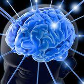 Le web a changé mon cerveau et ce n'est pas grave