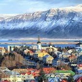 Crimes glacés: polars polaires et cuisine scandinave - Du Bruit Côté Cuisine