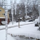 Twitter / IHappen2LikeNY: About eight inches in Dongan ...