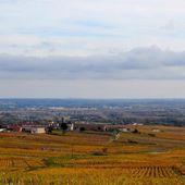 Pèlerinage en Bourgogne-Beaujolais 2013 - Domaine Buisson-Charles