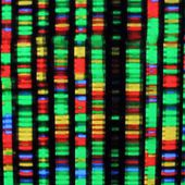 Scientists Discuss Synthetic Human Genomes in Secret, Scientists-Only Meeting