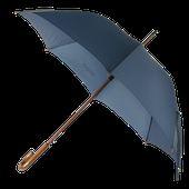FREE PNG Umbrella