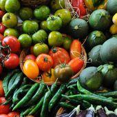Plus de 97 % de la nourriture vendue en Europe contient des résidus de pesticides
