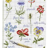 cross stitch: Flower & Garden