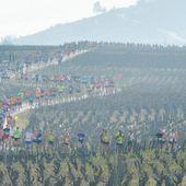 Toutes les images du semi-marathon de Nuits-Saint-Georges