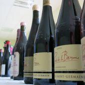300 bouteilles de vin sorties du lac d'Annecy après un an d'immersion