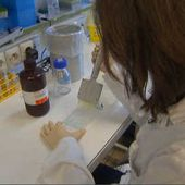 Les cellules-souche, grand espoir de la recherche