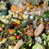 Almost half of the world's food thrown away, report finds