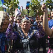 Mapuches en campagne