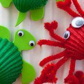 Le crabe et la tortue!