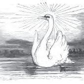 Le Vilain Petit Canard (Andersen-Soldi) - Wikisource