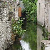 Mauves (rivière) - Wikipédia
