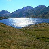 Estany de Lanós - Wikipédia