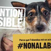 Dites #NONALABANDON