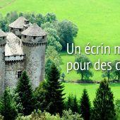 Bienvenue sur le site du Chateau d'Anjony (Cantal, Auvergne)