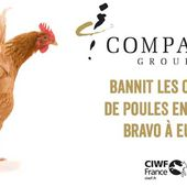 Oeufs : Après Sodexo, Compass Group s'engage ! | CIWF France