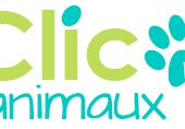 Clic Animaux - Cliquer pour sauver des animaux, chats, chiens, chevaux