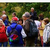 Les 12 Km Berriere-Barbechat oct 2014