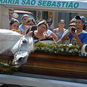 Bouleversant : lors des funérailles de son jeune maître, ce cheval s'avance pour lui dire adieu de la plus belle des manières, en un dernier hommage...