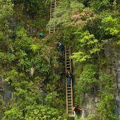 Ces enfants qui empruntent les chemins les plus dangereux et inhabituels du monde simplement...