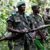 Kinshasa qualifie les ADF-NALU de terroristes | Afrique | DW.COM | 15.08.2016