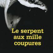 Le Serpent aux mille Coupures : Tomer Sisley prépare un massacre dans un trailer inquiétant - Actualité Film