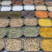 2016, Année internationale des légumineuses | 2016 International Year of Pulses