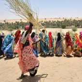 Sahel crisis : FAO in Emergencies