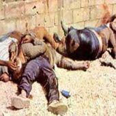 Sabra et Chatila : Le massacre inoubliable, impardonnable des Israéliens contre des Palestiniens