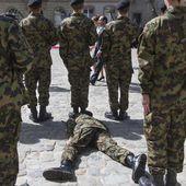 Un soldat suisse s'effondre au passage de François Hollande