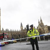 Ce que l'on sait de l'attaque à proximité du Parlement britannique