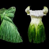 Outfits Made of Foods