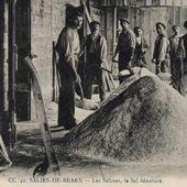 Salies de Béarn : des mariages qui ne manquaient pas de sel